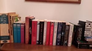 shelfie day bookWorl